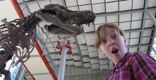 Sylvia reacts as a tyranosaurus rex skeleton looms above her