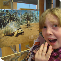 Sylvia reacts to an exceedingly cute turtle picture