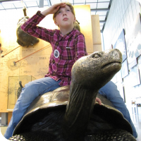 Sylvia poses on a bronze Galapagos Tortoise